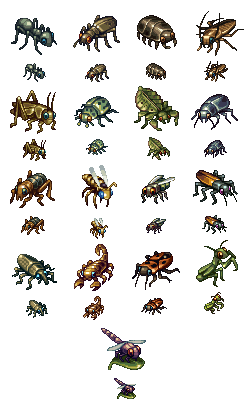 Some bugs